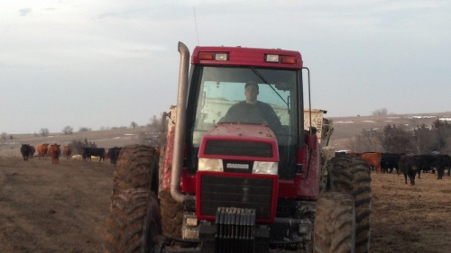 Emmet driving the tractor and feedwagon to deliver the cows their daily ration.