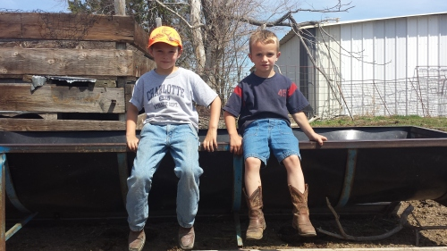 Adorable kids helping work cattle - definitely eye candy!